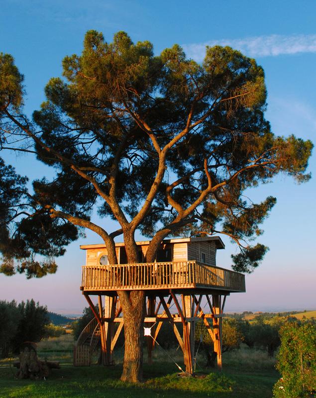 La più grande casa sull\'albero d\'Europa è a Viterbo (Italia ...