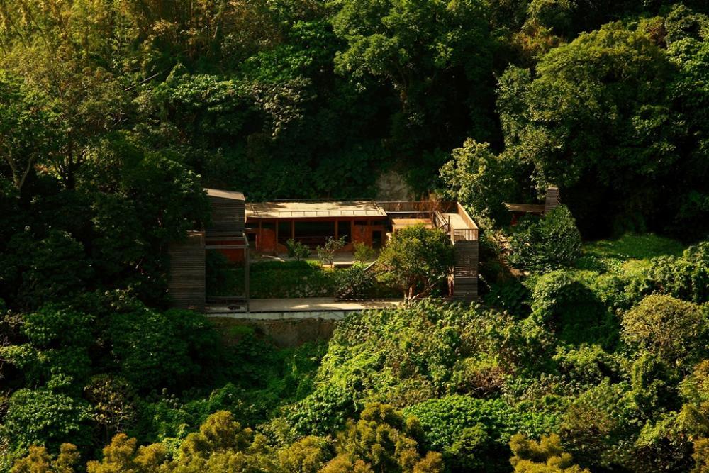 Ultra ruin legno dentro e fuori nella giungla di for Architettura natura