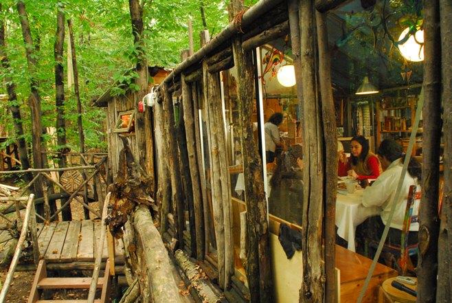 Piemonte italia un intero villaggio di case sugli alberi architettura ecosostenibile - Casa sugli alberi ...